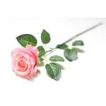 Тюльпан одиночный 50 см